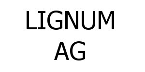 Homag fusioniert mit Ima
